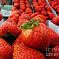 Fresh Strawberries by Peggy Hughes
