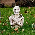 Front Yard Halloween Graveyard by Amy Cicconi
