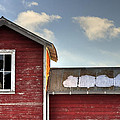 Ft Collins Barn 13493 by Jerry Sodorff