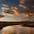 Gibbon River Yellowstone by Steve Gadomski