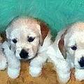 Golden Puppies by Michelle Calkins