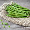 Green Beans by Sabino Parente