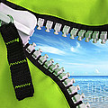Green Zipper by Carlos Caetano