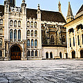 Guildhall Building And Art Gallery by Elena Elisseeva