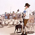 Herdsmen Of Sheep And Cattle, From The by William Henry Pyne