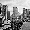 high rise apartment condo blocks in the west end coal harbour marina Vancouver BC Canada by Joe Fox