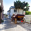 Horse And Buggy Ride St Augustine by Michelle Wiarda
