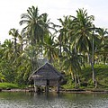 Isla Tigre - Hut Over Water And Palm Trees by Elle Nicolai