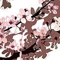 Japanese Blossom by Sarah OToole