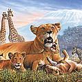Kilimanjaro Lions