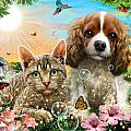 Kitten And Puppy by Adrian Chesterman