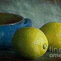 Lemons And Blue Terracotta Pot by Elena Nosyreva