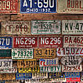 License To Drive by Debra and Dave Vanderlaan