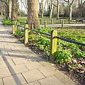 London Park by Tom Gowanlock