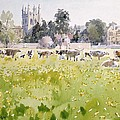 Looking Across Christ Church Meadows by Lucy Willis