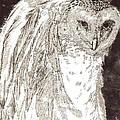 Love Owl by George Harrison