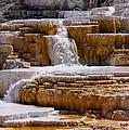 Mammoth Springs Falls
