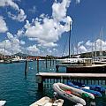 Marina St Thomas Virgin Islands by Amy Cicconi