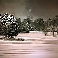 Midnight Stillness by Julie Palencia