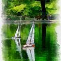 Model Boat Basin Central Park by Amy Cicconi