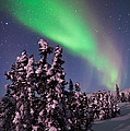 Nature's Canvas In The Northern Sky by Mike Berenson
