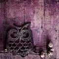 Nocturnal In Pink by Priska Wettstein