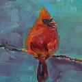 Oklahoma Cardinal by Susie Jernigan