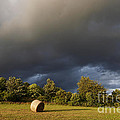 Overcast - Before Rain by Michal Boubin