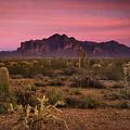 Paint It Pink Sunset  by Saija  Lehtonen