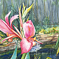 Peach Canna By The Pond by Patricia Allingham Carlson
