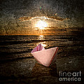 Pink Dreams by Stelios Kleanthous