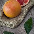 Pink Grapefruit by Sabino Parente