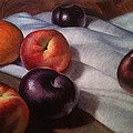 Plums And Nectarines by Timothy Jones