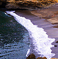Point Lobos by Ron Regalado