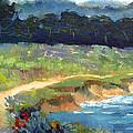 Point Lobos Trail by Karin  Leonard