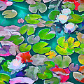 Pond Lily 5 by Pamela Cooper