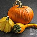 Pumpkins On A Slate Plate by Palatia Photo