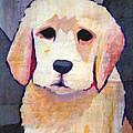 Puppy Dog by Lutz Baar
