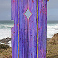 Purple Gateway To The Sea  by Asha Carolyn Young