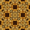 Rattlesnake Abstract 20130204p0 by Wingsdomain Art and Photography