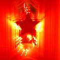 Red Christmas Star by Gaspar Avila