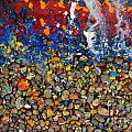 Rocks Splattered With Paint by Amy Cicconi