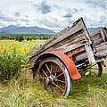 Rustic Landscapes - Wagon And Wildflowers by Gary Heller