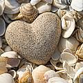 sea shell Heart by Boon Mee