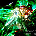 Shining Through The Glass II by Kitrina Arbuckle