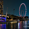 Singapore Flyer At Night by Rick Piper Photography