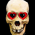 Skull Art - Day Of The Dead 2 by Sharon Cummings