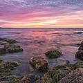 Sky Purple by Jon Glaser