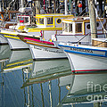Small Fishing Boats Of San Francisco  by George Oze