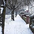 Snowy Path by Tom Gowanlock